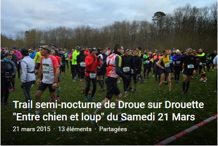 chien loup 2015